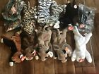Ty Beanie Baby Lot Cats Zip Chip Flip Pounce Prance Freckles Blizzard Canyon