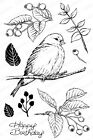 Baby BIRD Foliage Leaf Clear Unmounted Stamp Set Impression Obsession CL837 NEW