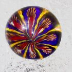 Murano Glass Paperweights by Mystery of Venice Butterfly Paperweight