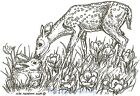 Deer Fawn  Bunny Rabbit Spring Wood Mounted Rubber Stamp Northwoods M6488 New