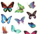 Beautiful Butterfly Stickers 6 Sheets All Different