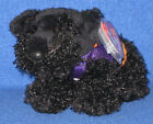 TY TREMBLE the HALLOWEEN DOG BEANIE BABY (INTERNET EXCLUSIVE) - NEAR PERFECT TAG