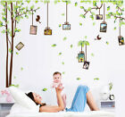 Large Family Tree Photo Frame Birds Wall Stickers Vinyl Decoration Mural Decals