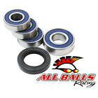 2001-2004 Honda CBX250 TWISTER (EU) All Balls Wheel Bearing Kit [Rear]