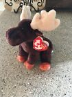 Ty Beanie Baby Babies Zeus The Moose Plush Stuffed Animal With Tags 2002 Retired