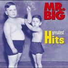 Greatest Hits [US Release] by Mr. Big (CD, May-2004, Rhino (Label))