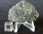 Extremely rare Lherzolitic Shergottite 61g full slice of Martian meteorite