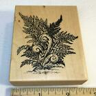 PSX Fern Frond F2585 Rare Rubber Stamp