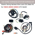 150 200 250CC ATV Buggy Wiring Harness CDI STATOR Ignition Electric Kit W 2 key