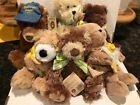 Boyds Plush Lot of 6 ACS American Cancer Society Daffodil Days Bears Charity