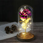 Crystal Galaxy Rose in The Glass Dome 20 led Lights Gift for Firlfriend Mom Wife