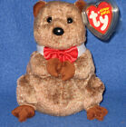 TY PUNXSUTAWNEY PHIL 2009 GROUNDHOG BEANIE BABY - COC EXCLUSIVE - MINT TAGS