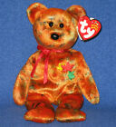 TY KANATA the BEAR BEANIE BABY CANADA EXCLUSIVE - MINT with MINT TAG