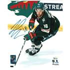 Minnesota Wild Collecting and Fan Guide 71