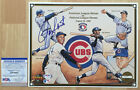 Chicago Cubs Collecting and Fan Guide 86