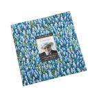 Moda Dreamscapes Layer Cake Fabric Ira Kennedy 42 10 Quilting Quilt Squares Kit