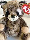 TY SNEAKS the RACOON BEANIE BABY with TAG