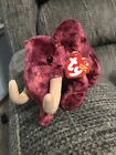 NWT Colosso Beanie Baby in MINT condition