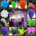 Wholesale 10 50 100pcs High Quality Natural OSTRICH FEATHERS 6 24inch 15 60cm