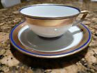 Langenthal Vintage Cup and Saucer- Museum Quality, Very Rare