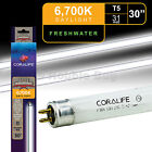 30 31W HOT5 Aquarium Fluorescent Lamp Coralife 6700K Daylight High Output T5