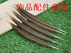 Wholesale 10-100pcs Beautiful Natural Golden Pheasant Tail Feathers 15-20 Cm