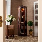 Mahogany Mirror Back Lighted Corner CURIO DISPLAY CABINET Glass Furniture Office