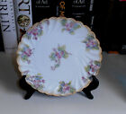 EARLY 20TH CENTURY HAND PAINTED PORCELAIN PLATE