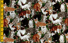 Whiskers Kitty Cat Kitten Cats cotton quilt fabric Northcott 1yd