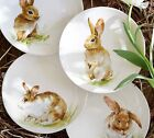 New Pottery Barn Easter Pasture Bunny Plates Set of 4 Salad Dessert In Gift Box