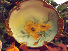 LIMOGES D&C CHARGER HAND PAINTED