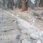 PLACER MINING CLAIMS SO CAL GOLD SILVER ORE MINE HOLCOMB CREEK BIG BEAR