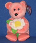 TY DEARLY the BEAR  BEANIE BABY - HALLMARK EXCLUSIVE -  MINT with MINT TAG
