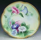 LOVELY LOUISE BAVARIA HAND PAINTED MORNING GLORY PLATE