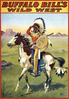 6070Wall Decoration PosterInterior artBuffalo Bill wild westnativehorse
