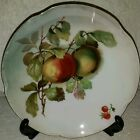 CO DISPLAY PLATE WITH FRUIT