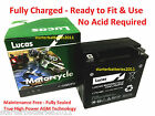 YTX14-BS LUCAS Motorcycle Battery BMW 1200 CCM HP 2 (06 - 09)