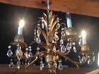 Crystal Petite Five Light Chandelier