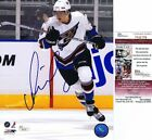 Alexander Ovechkin Card and Memorabilia Buying Guide 74