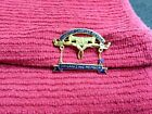 DAR Daughters Of The American Revolution Charter Chapter Member Gold Pin Lot25
