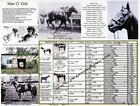 Race Horse Man O War picture pedigree photo chart one of the greatest