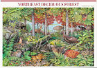 Nature In America USPS Stamps Sheet MNH Scott 3899 Northeast Decid Forest 10x37