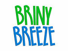 Cute Briny Breeze Machine Embroidery Designs Monogram Set Alphabet Font PES