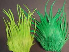 Lot  317 2 DYED Dry Fly Rooster Saddle Pieces Feathers Fly Tying Hair