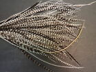 Lot 92 100 Dry Fly Rooster Saddle Bundles Feathers Fly Tying Whiting