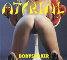 ATERIAL- Bodyshaker CD MEGA RARE Hair Metal INDIE Hard Rock GLAM
