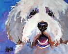 Bearded Collie Dog Art Print Signed by Artist Ron Krajewski 8x10