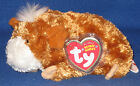 TY FEARLESS the GUINEA PIG BEANIE BABY - MINT with MINT TAGS