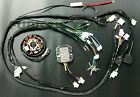 GY6 150cc HARNESS COMPLETE 11 POLES SCOOTER