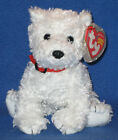 TY DUNDEE the DOG BEANIE BABY - MINT with MINT TAGS